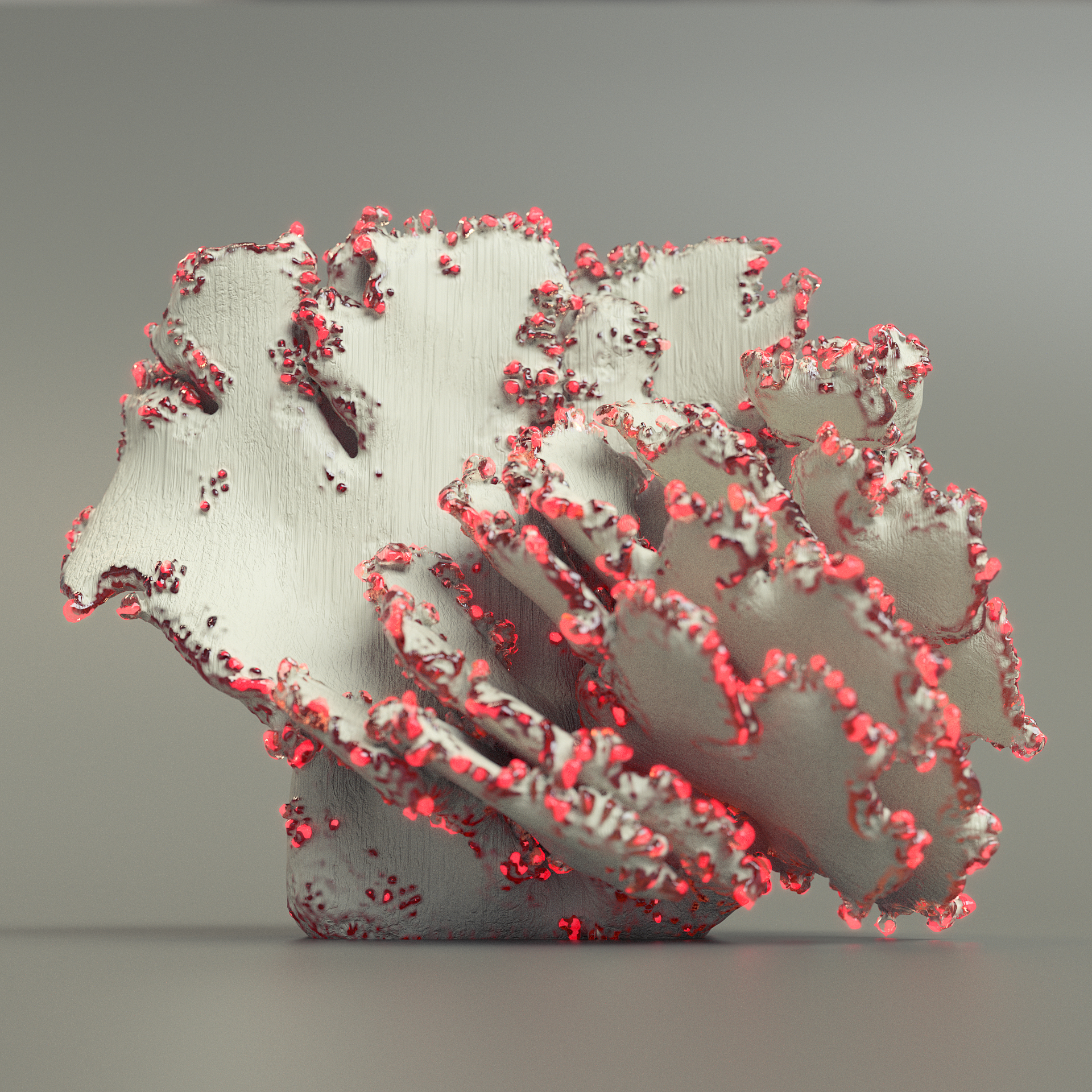 coralthing_04_01